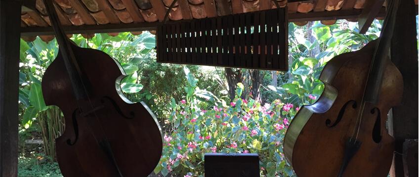 Ataco - Apaneca   Jardín de Celeste 05
